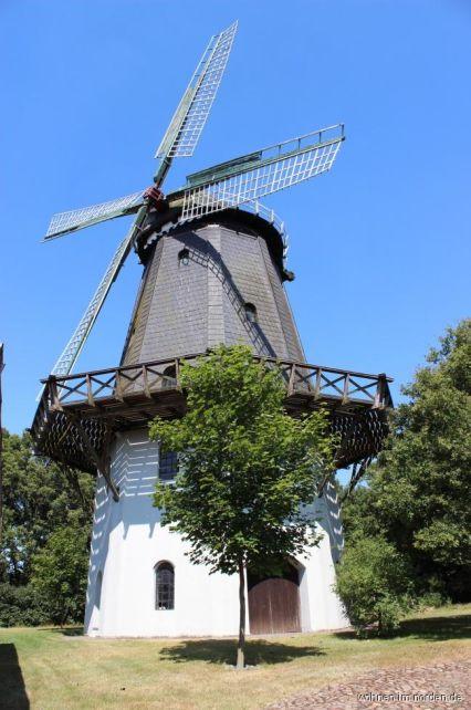 Windmühle mit Natur pur!