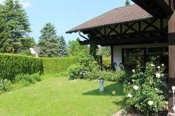 Erdgeschosswohnung in Michelstadt  - Michelstadt