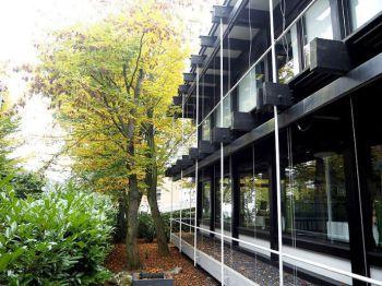 Einfamilienhaus in Königswinter  - Stieldorf