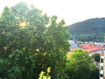 Etagenwohnung in Heidelberg  - Altstadt