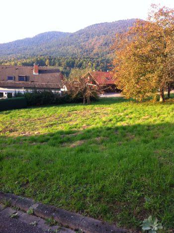 Wohngrundstück in Loffenau
