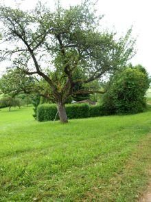Wohngrundstück in Renningen  - Malmsheim