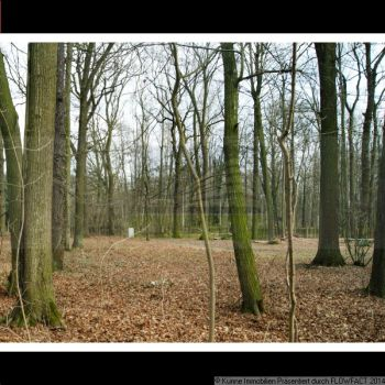 Wohngrundstück in Brandis  - Waldsteinberg