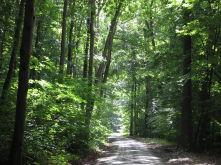 Land- und Forstwirtschaft in Großenkneten  - Haschenbrok