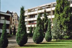 Souterrainwohnung in Köln  - Neuehrenfeld