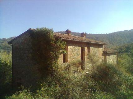 Rustico! - Rekonstruktion eines Bauernhauses mit kleiner Olivenfarm in...
