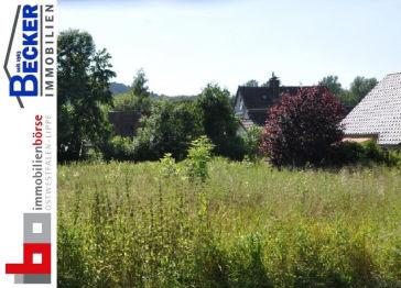 Wohngrundstück in Horn-Bad Meinberg  - Bad Meinberg