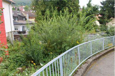 Wohngrundstück in Heidelberg  - Ziegelhausen