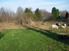 Wohngrundstück in Dortmund  - Eving