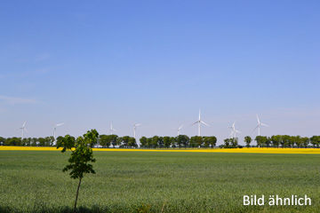 Land- und Forstwirtschaft in Zarrentin