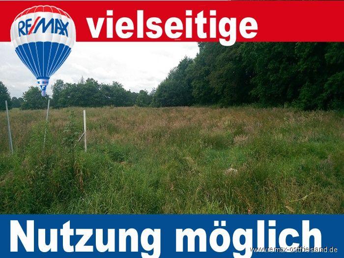 Gr�nland Ackerland verpachten - Grundst�ck mieten - Bild 1