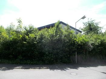 Einfamilienhaus in Konstanz  - Königsbau