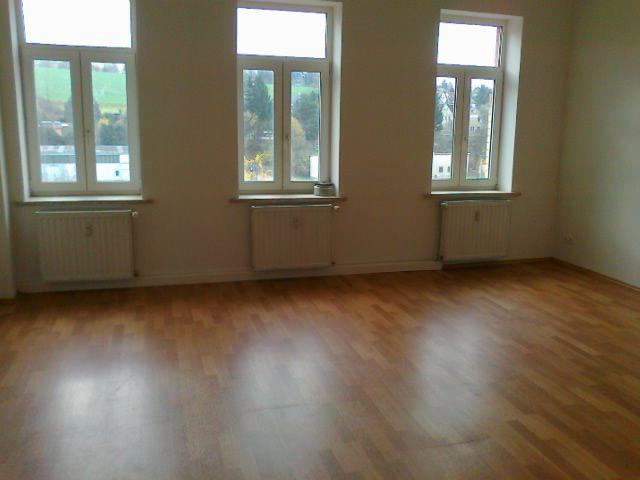 Ruhig gelegene sanierte 4 Zimmer Wohnung - Wohnung mieten - Bild 1
