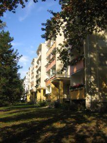 Etagenwohnung in Potsdam  - Waldstadt II