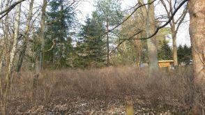 Sonstiges Grundstück in Kleinmachnow